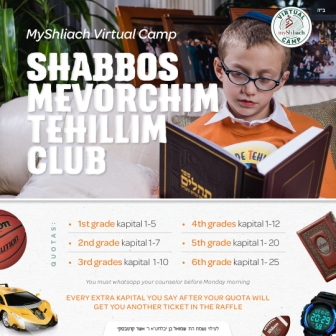 The Partner Project launched at MyShliach Virtual Camp